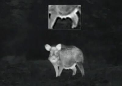 Zeiss DTI 3/25 - Bild in Bild Funktion (PiP))
